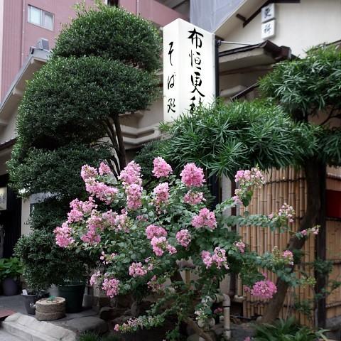 natsumikangiri01.jpg