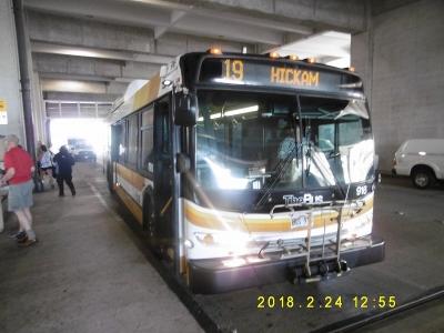 P1110043.jpg