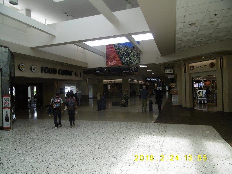 P1110051.jpg