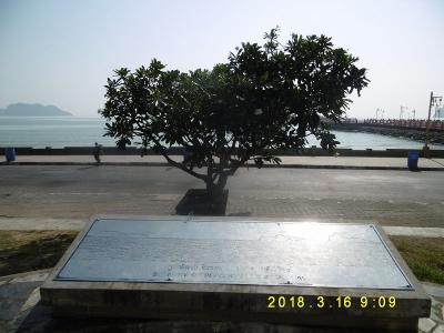 P1110329.jpg