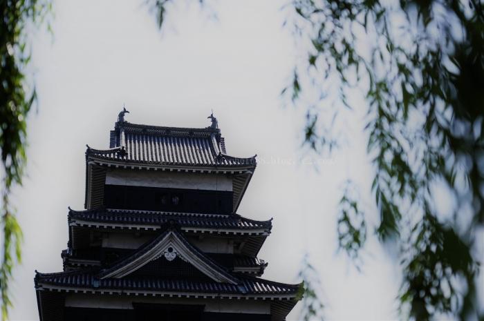 松本城3850