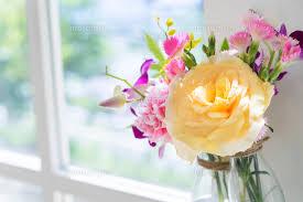 flower20180818b.jpg