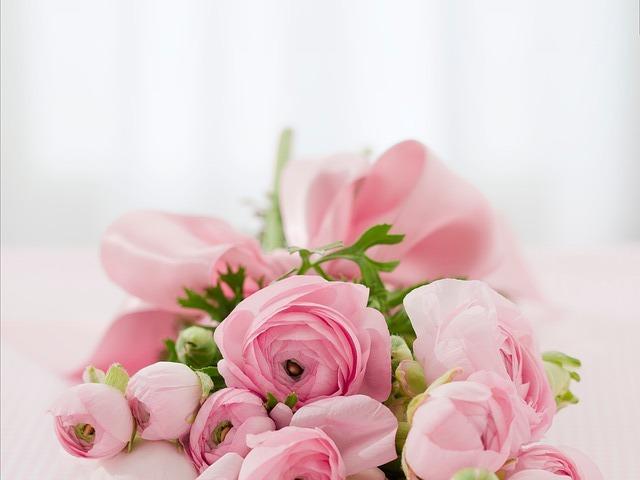 roses-142876_640.jpg