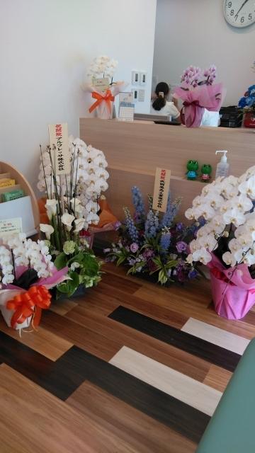 お花でいっぱいの待合室 (360x640)
