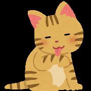 ネコ(毛づくろい