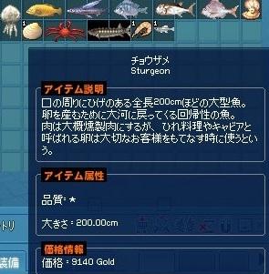mabinogi_2018_06_20_008.jpg