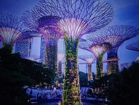 シンガポールC