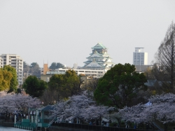 大阪城コラボ