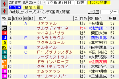 18BSN賞