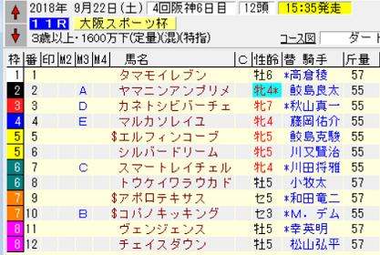 18大阪スポーツ杯