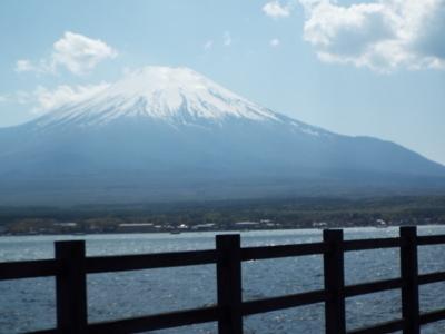 綺麗な富士