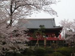 上野公園 不忍池 清水堂 2018