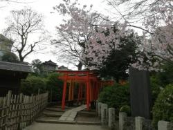 根津神社 2018