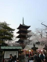 上野公園 五重塔 2018