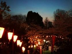 上野公園 2018