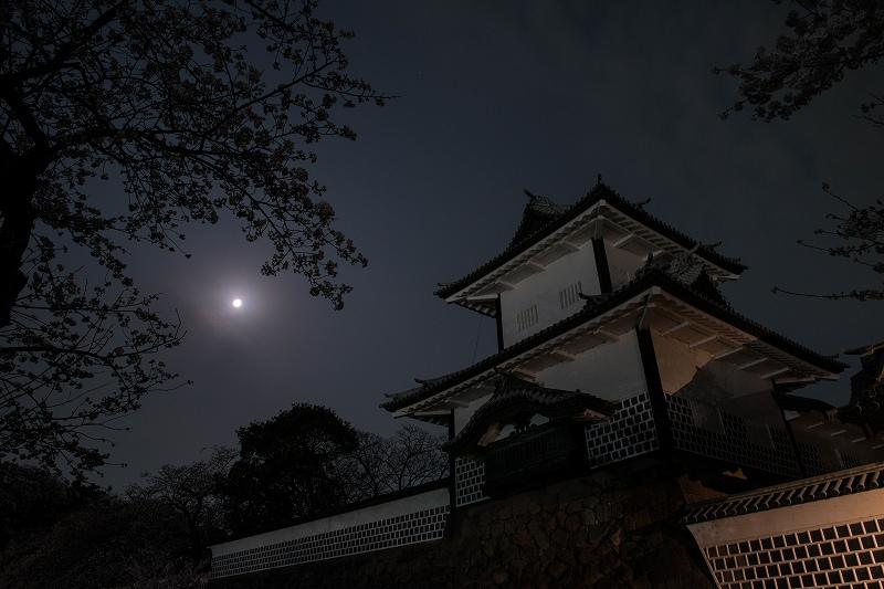 2018.04.02 金沢城 夜桜 8