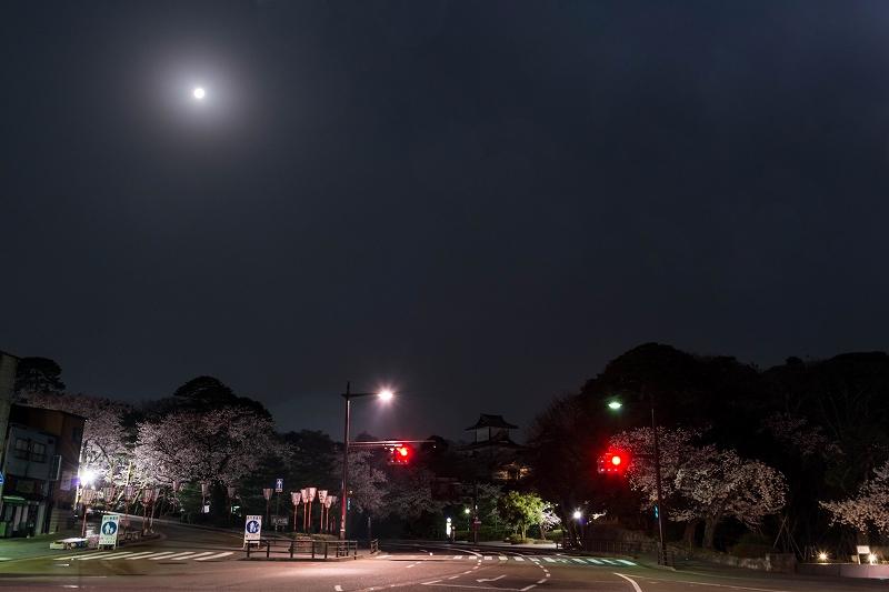 2018.04.02 金沢城 夜桜 7