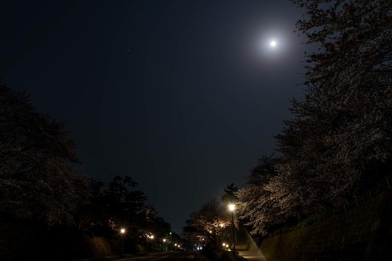 2018.04.02 金沢城 夜桜 4