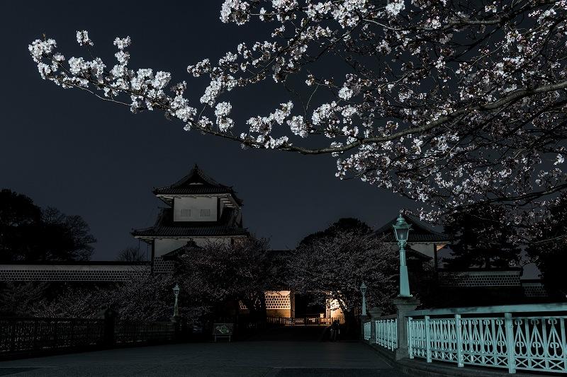 2018.04.02 金沢城 夜桜 2