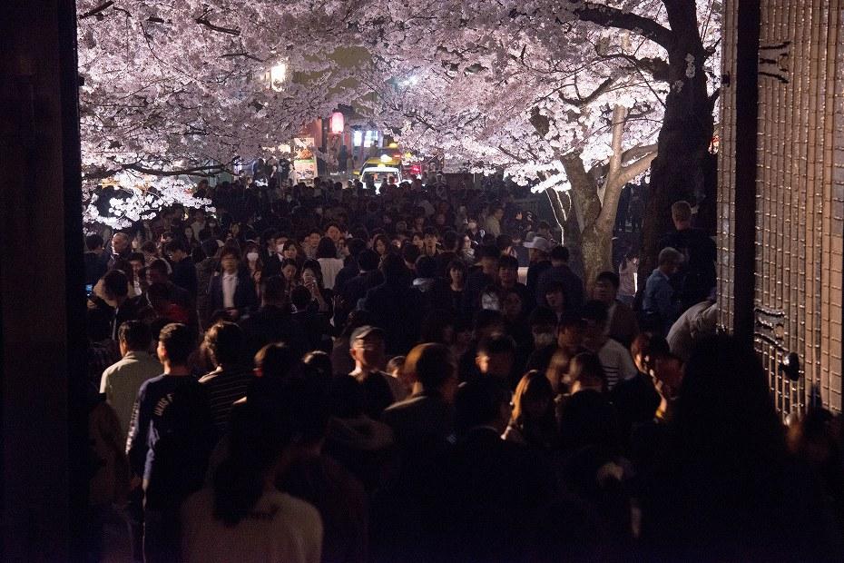 2018.04.03 金沢城 夜桜 15