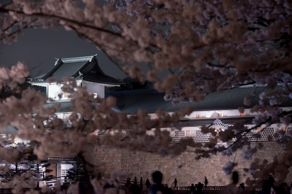 2018.04.03 金沢城 夜桜 13