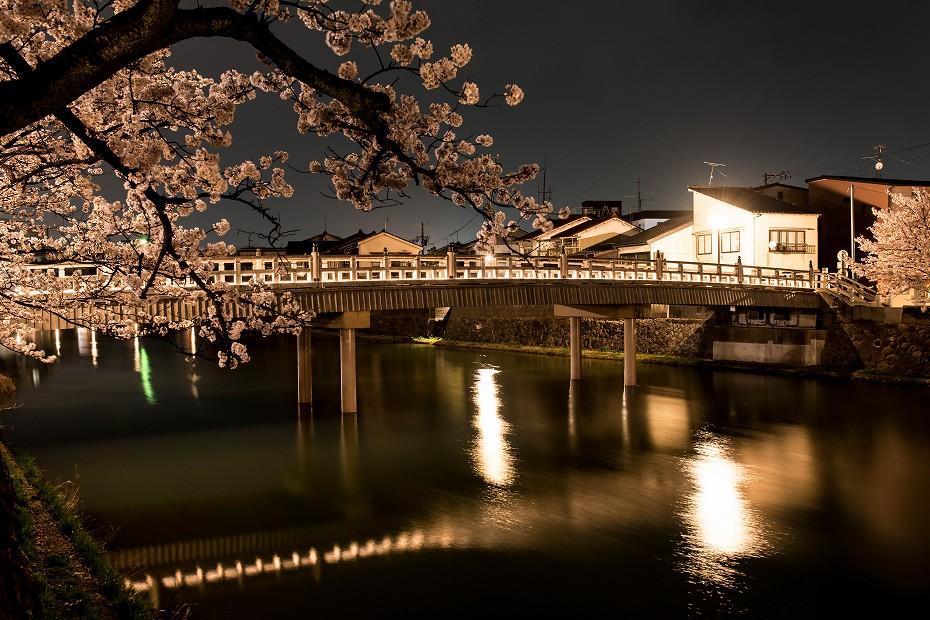 2018.04.03 主計町の夜桜 3