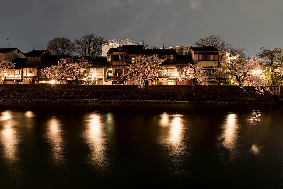 2018.04.03 主計町の夜桜 4