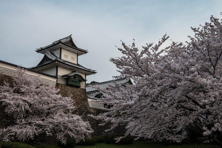 2018.04.03 金沢城 朝景 1