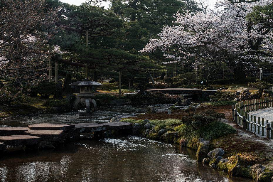 2018.04.03 兼六園 桜景色 2