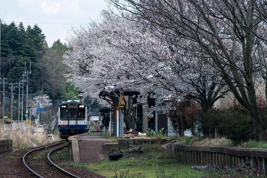 2018.04.08 のと鉄道 3