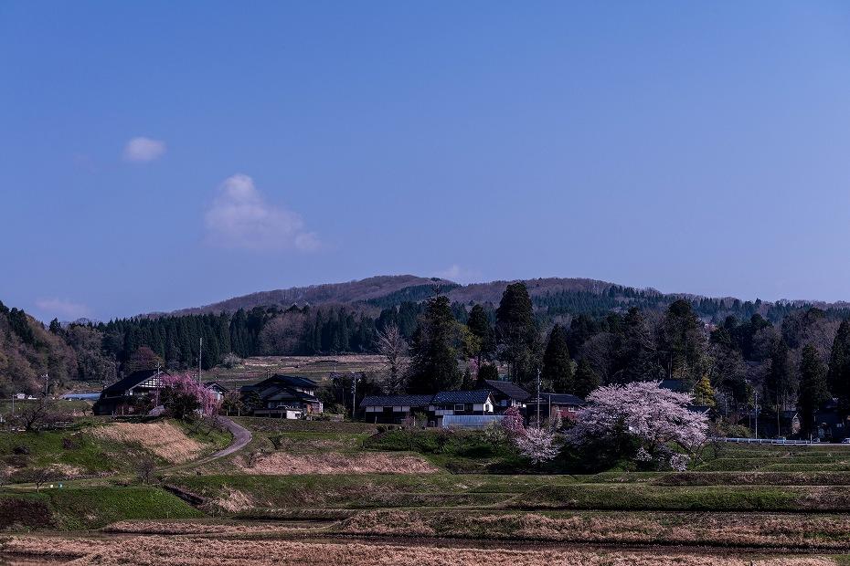 2018.04.10 津幡町 桜 2