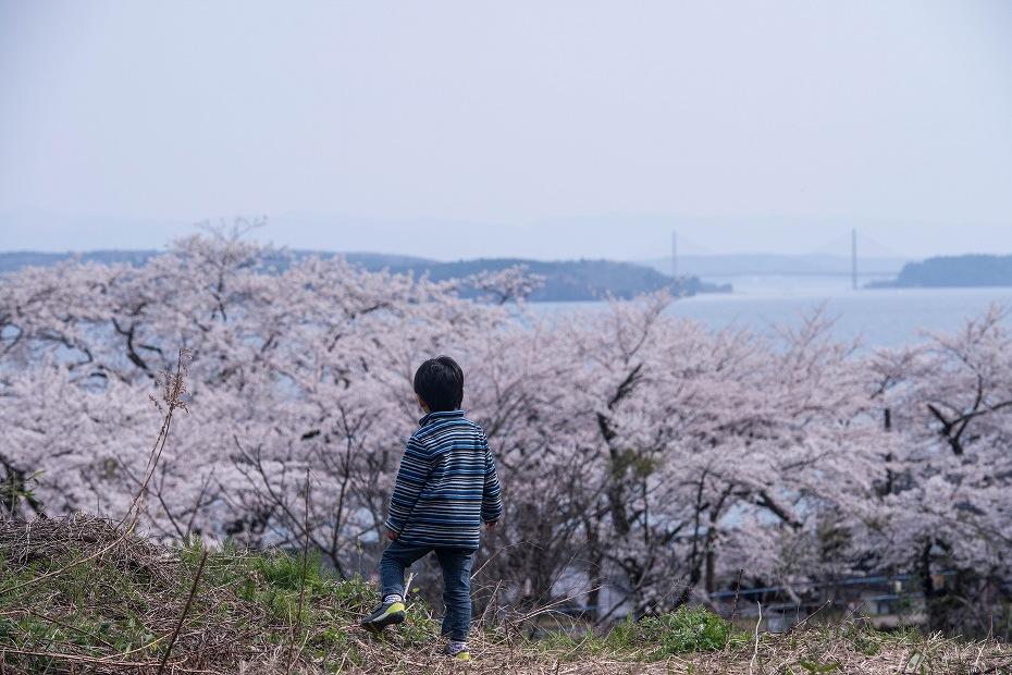 2018.04.10 能登さくら駅 3