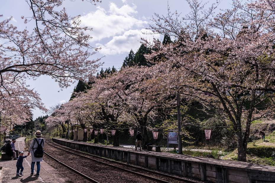 2018.04.13 能登さくら駅 17