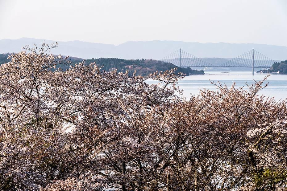 2018.04.13 能登さくら駅 3