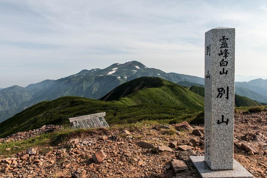 2018.07.25油坂の頭 別山 1 (27)