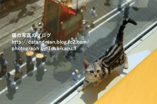 IMG_0138s.jpg