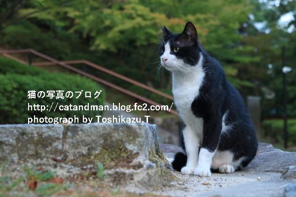 IMG_1144s.jpg