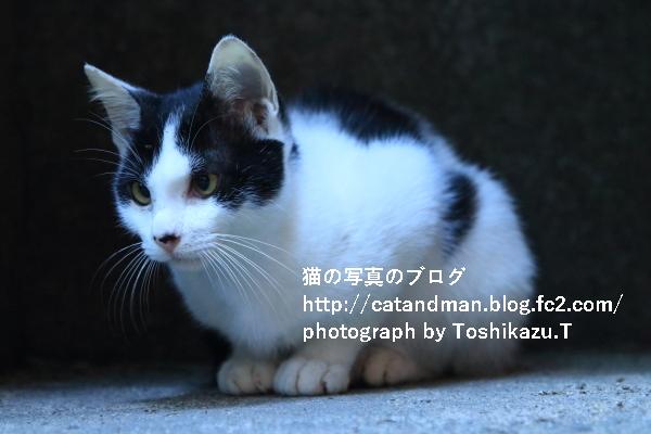 IMG_7706s.jpg