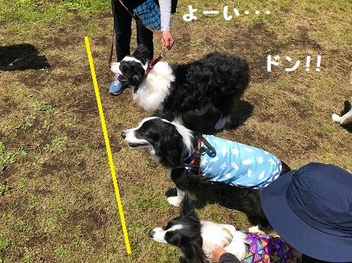 s-朝霧FDG 20180505 sora_139