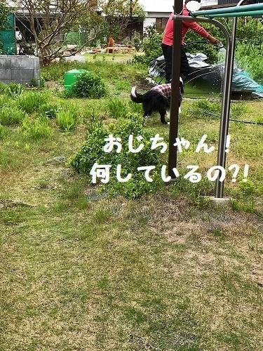 s-IMG_7155_3.jpg