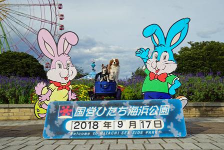 20180924 (12)