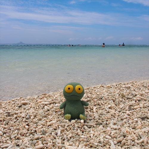 ゆうブログケロブログ沖縄2018 (62)