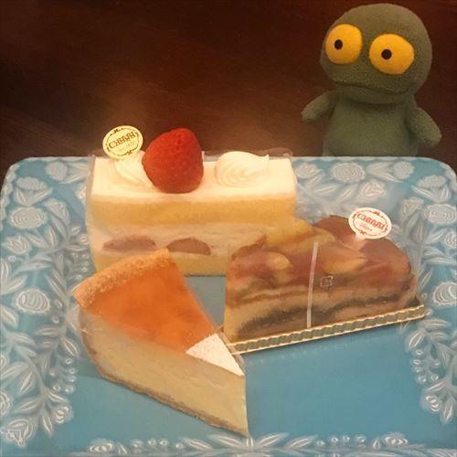 ゆブログケロブログ葉山2018 (42)