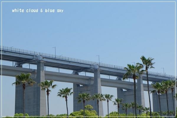 DSCF1693-1.jpg