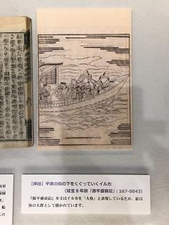 180801 fkitanomaru-26