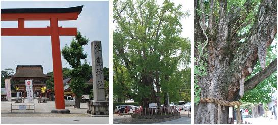 津島神社G