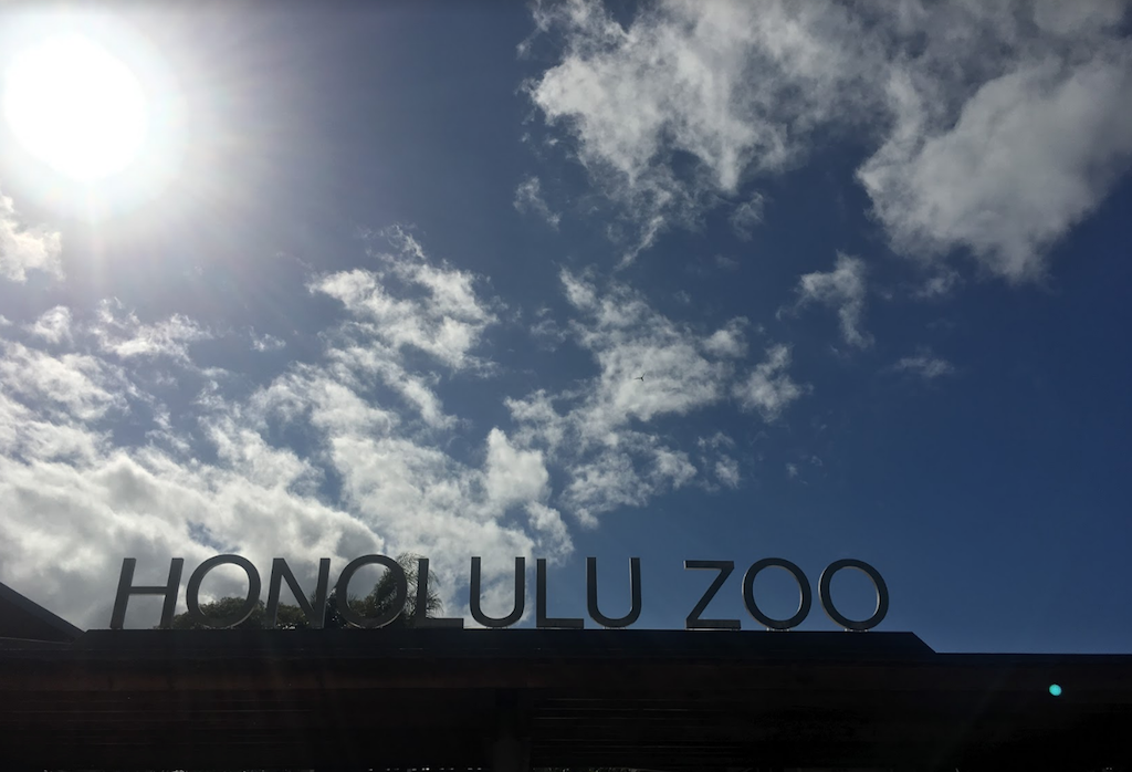 zoo07.png