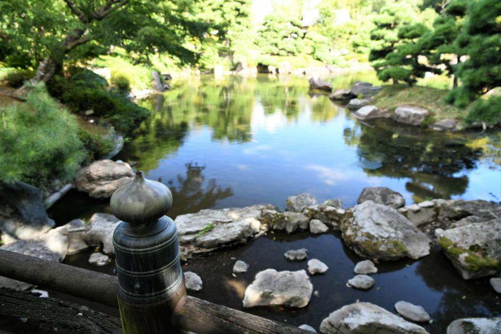 擬宝珠と池