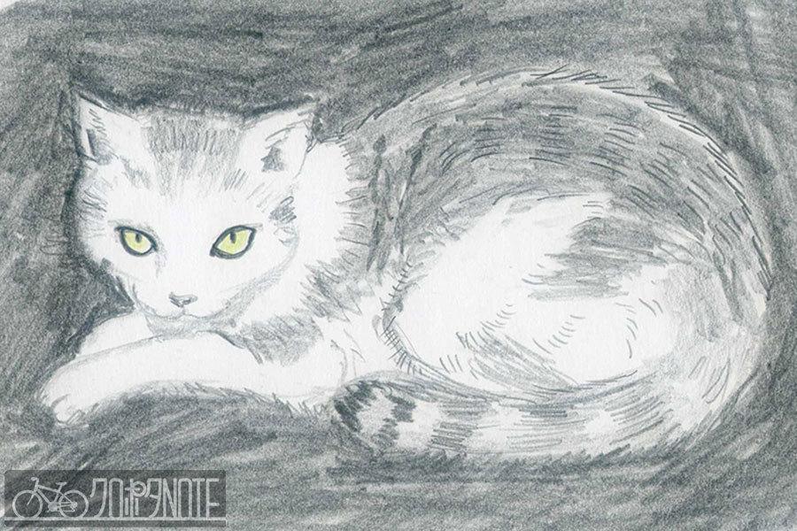 CPNOTE20180820_cat.jpg