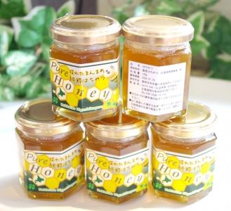 はちみつのこぐれ_ハチミツ 蜂蜜 2018年採蜜_非加熱 完熟はちみつ001